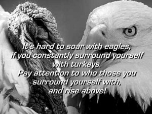 turkeys-and-eagles