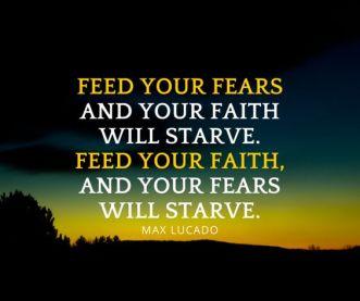 faithfeed